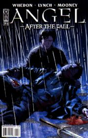 Angel After The Fall #13 Cover B (2008) IDW Publishing comic book